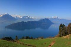 Île dans le lac Luzerne Photographie stock libre de droits
