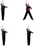 Le danseur espagnol dans diverses poses sur le blanc Photographie stock libre de droits