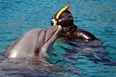 Le dauphin a émergé de l'eau naviguer au schnorchel et nager avec le dauphin dans la mer ou la piscine Photo stock
