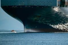 Le dauphin sautant par-dessus la proue de bateau Photo stock