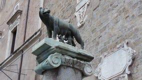 Le ` de loup de Capitoline de ` photographie stock libre de droits