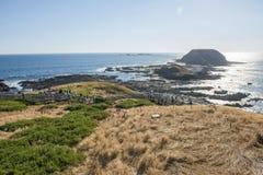 Île de Phillip à Melbourne Photos stock