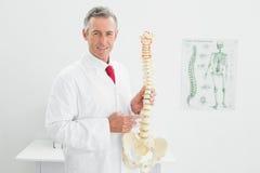 Le den hållande skelett- modellen för doktor i regeringsställning Arkivbild