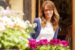 Le den mogna kvinnablomsterhandlaren Small Business Flower shoppa ägaren Arkivfoton