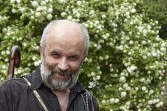 Le den skalliga mannen med ett skägg Arkivfoto