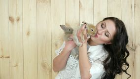 Le den unga kvinnan som rymmer kaniner, älskar bra behandling av djur, dam inhemska hare stock video