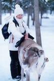 Le den unga kvinnan som slår renen på baksida i vintern Rovaniemi, Lapland, Finland arkivbild