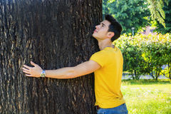 Le den unga mannen som kramar ett träd som ser upp Arkivbild