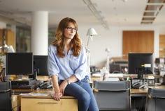 Le den yrkesmässiga affärskvinnan royaltyfri bild