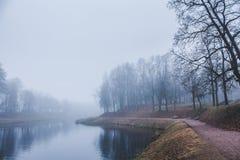Le dernier jour du brouillard fort d'automne en 2014 Photos stock
