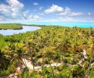 Île des Caraïbes tropicale de Contoy de vue aérienne Images stock
