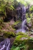 Le DES de cascade rase, le Cantal, Auvergne, France Photographie stock libre de droits