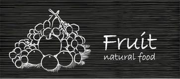 Le dessin de main porte des fruits bannière noire Image stock