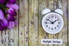 Le dessus de concept de ressort de temps heures d'été regardent vers le bas avec l'horloge blanche et les tulipes pourpres photos libres de droits