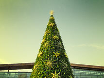 Le dessus de l'arbre de Noël avec un ciel filtré dans le backgro Images libres de droits