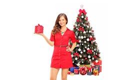 Le det kvinnliga innehavet en gåva och posera framme av jul Arkivbild