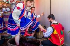 Le deuxième festival ethnique Bobovischenske Grono a été tenu dans Zaka Photographie stock libre de droits
