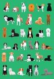 Le divers chien de taille moyenne multiplie l'illustration de vecteur de bande dessinée illustration de vecteur