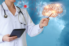 Le docteur montre le cerveau Photos libres de droits