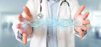 Le docteur tenant un 3d rendent l'ADN Images stock