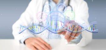 Le docteur tenant un 3d rendent l'ADN Image libre de droits