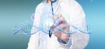 Le docteur tenant un 3d rendent l'ADN Photos libres de droits