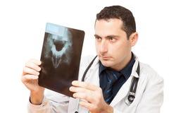 Le docteur vérifie vers le haut du rayon X Image libre de droits