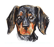 Le dog& x27 ; s se dirigent, l'avatar, la peinture Photo stock