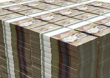 Le dollar canadien note la pile de paquets Image stock