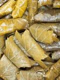Le dolma arménien des feuilles marinées de vigne et hachent Images stock