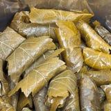 Le dolma de Caucase des feuilles marinées de raisin et hachent Photos stock