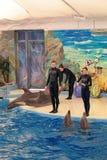 Le Dolphinarium Images libres de droits