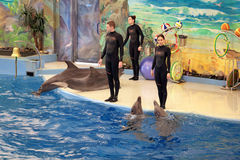 Le Dolphinarium Photos stock