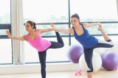 Le donne adatte che fanno l'yoga d'equilibratura posano nello studio di forma fisica Fotografie Stock Libere da Diritti