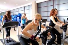Le donne che risolvono sulla filatura bikes alla ginnastica Fotografia Stock Libera da Diritti