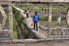Le donne cinesi sono sul percorso roccioso al lavoro di campo Immagine Stock