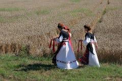 Le donne in costumi tradizionali entrano in campo raccogliere il grano Fotografia Stock Libera da Diritti