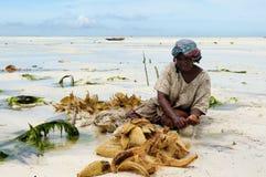 Le donne etniche sulla spiaggia sabbiosa sta facendo la corda del ` s della nave Fotografie Stock Libere da Diritti