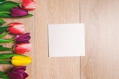 Le donne ` s il giorno fondo dell'8 marzo con la molla fiorisce Immagine Stock Libera da Diritti