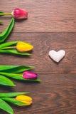 Le donne ` s il giorno fondo dell'8 marzo con la molla fiorisce Fotografia Stock Libera da Diritti