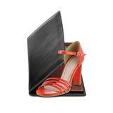 Le donne spendono più sulle scarpe Fotografia Stock