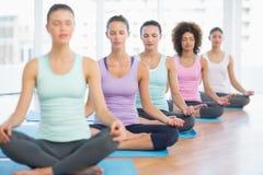 Le donne sportive nella meditazione posano con gli occhi chiusi allo studio di forma fisica immagine stock libera da diritti