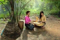 Le donne stanno spulando il riso per la separazione del riso Immagini Stock
