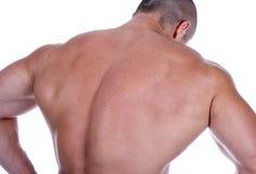 Le dos de l'homme sexy sportif Image stock
