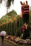 Le dragon chinois photographie stock libre de droits