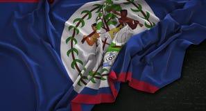 Le drapeau de Belize a ridé sur le fond foncé 3D rendent illustration stock