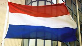 Le drapeau de la Hollande sur le vent Photographie stock