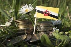 Le drapeau du Brunei avec la pile d'argent invente avec l'herbe images libres de droits