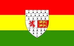 Le drapeau du comté Carlow est un comté en Irlande photos stock