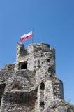 Le drapeau sur la bastille ruinée Image libre de droits